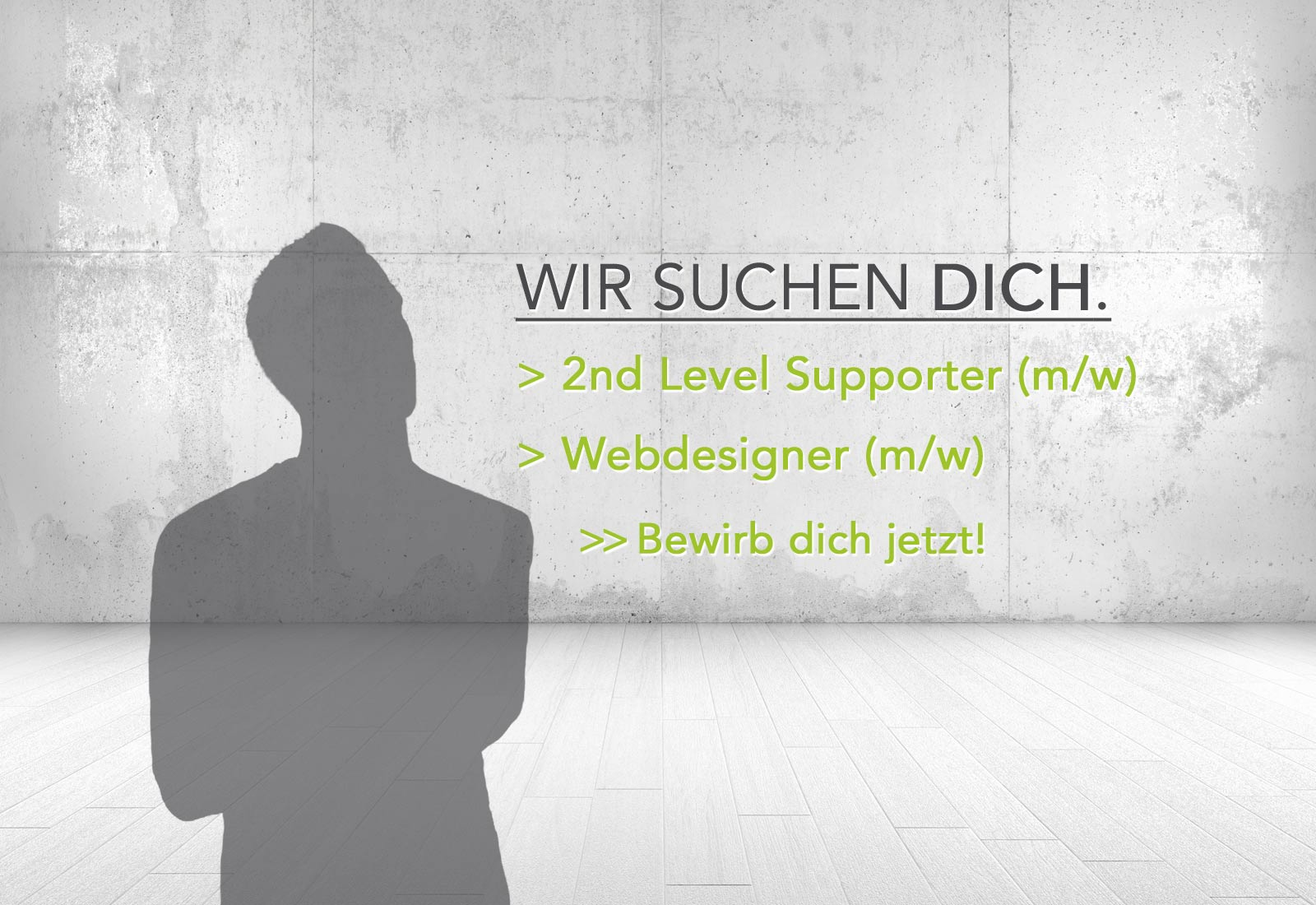 IT-Qualitätsmanager (m/w) - Webdesigner (m/w)